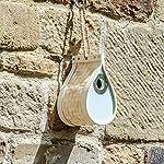 Dewdrop Bird Nest Box | Nesting House | Bird House | Bird Box | Wildlife Hotel & Feeder | Birds, Bugs & Bee Box for Gardens | M&W