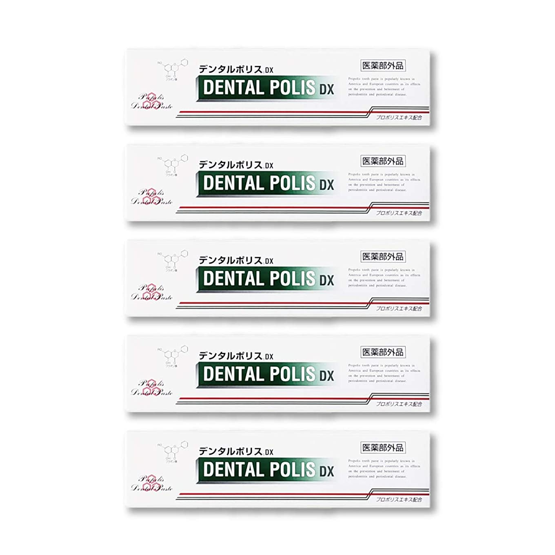 固める応用デンタルポリスDX  80g   5本セット 医薬部外品  歯みがき