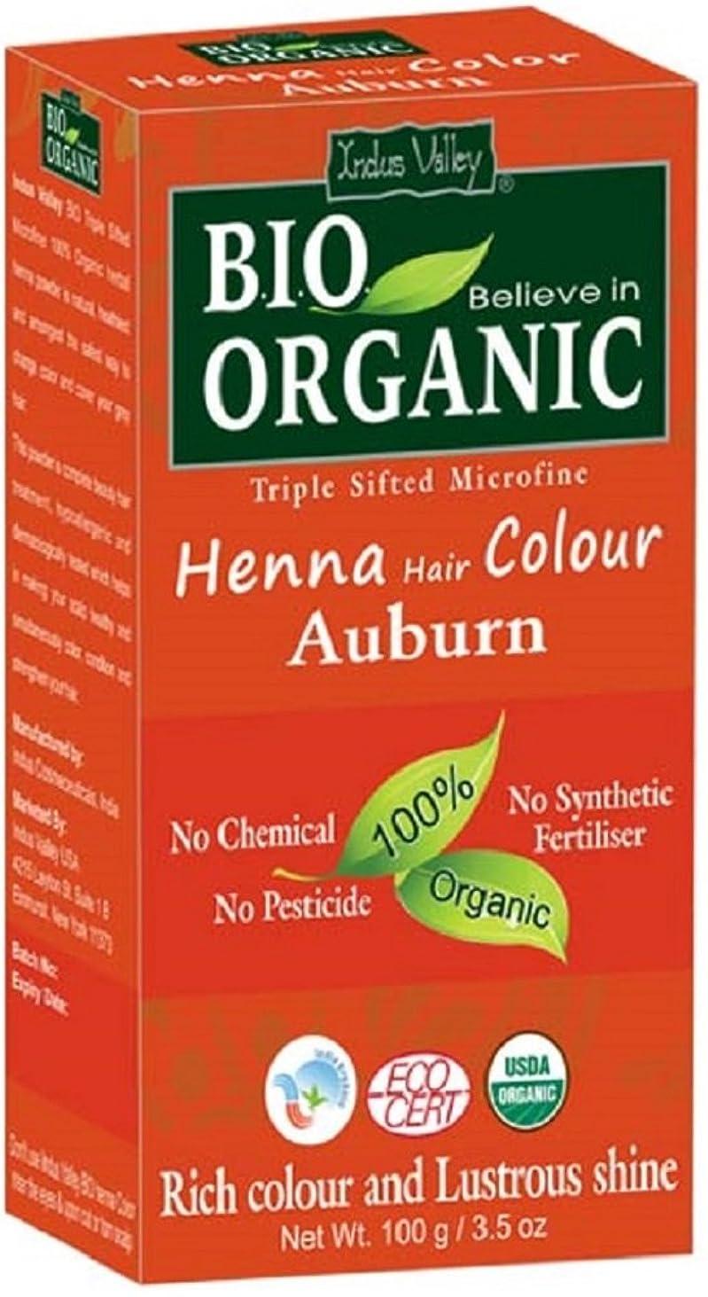 降臨忍耐拮抗インダスバレーヘナ染毛剤オーバーン100%バイオオーガニックトリプルふるい分けマイクロファインパウダー