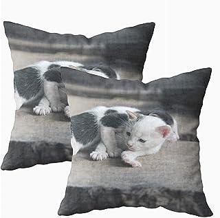 Ducan Lincoln Pillow Case 2PC 18X18,Funda De Almohada De Arte,Fundas De Funda De Almohada Cuadrada Animales Divertidos Dos Adorables Gatos Grises Jugando Banco De Madera Hecho A Mano