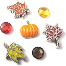 FCL Designs - Fall Theme Floating Charms Combination for Lockets