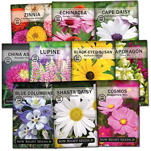 Sow Right Seeds – Flower Garden Seed Collection – Coneflower, Snapdragon, Zinnia, Cosmos, Cape Daisy, Aster, Lupine, Black-eyed Susan, Shasta Daisy, and Blanket Flower; Heirloom Seeds for Planting