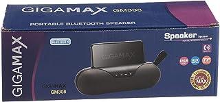 speaker GM308 GIGAMAX