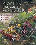 PLANTES SAUVAGES MEDICINALES LES RECONNAITRE LES CUEILLIR LES UTILISER