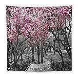Tapiz cuadrado para colgar en la pared para el hogar Dic Blossoms in Central Park Cherry Bloom Trees Forest 60 x 60 pulgadas