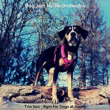 Trio Jazz - Bgm for Dogs at Home