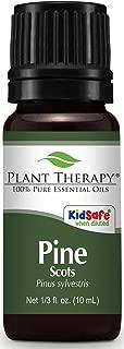 pinus sylvestris leaf oil