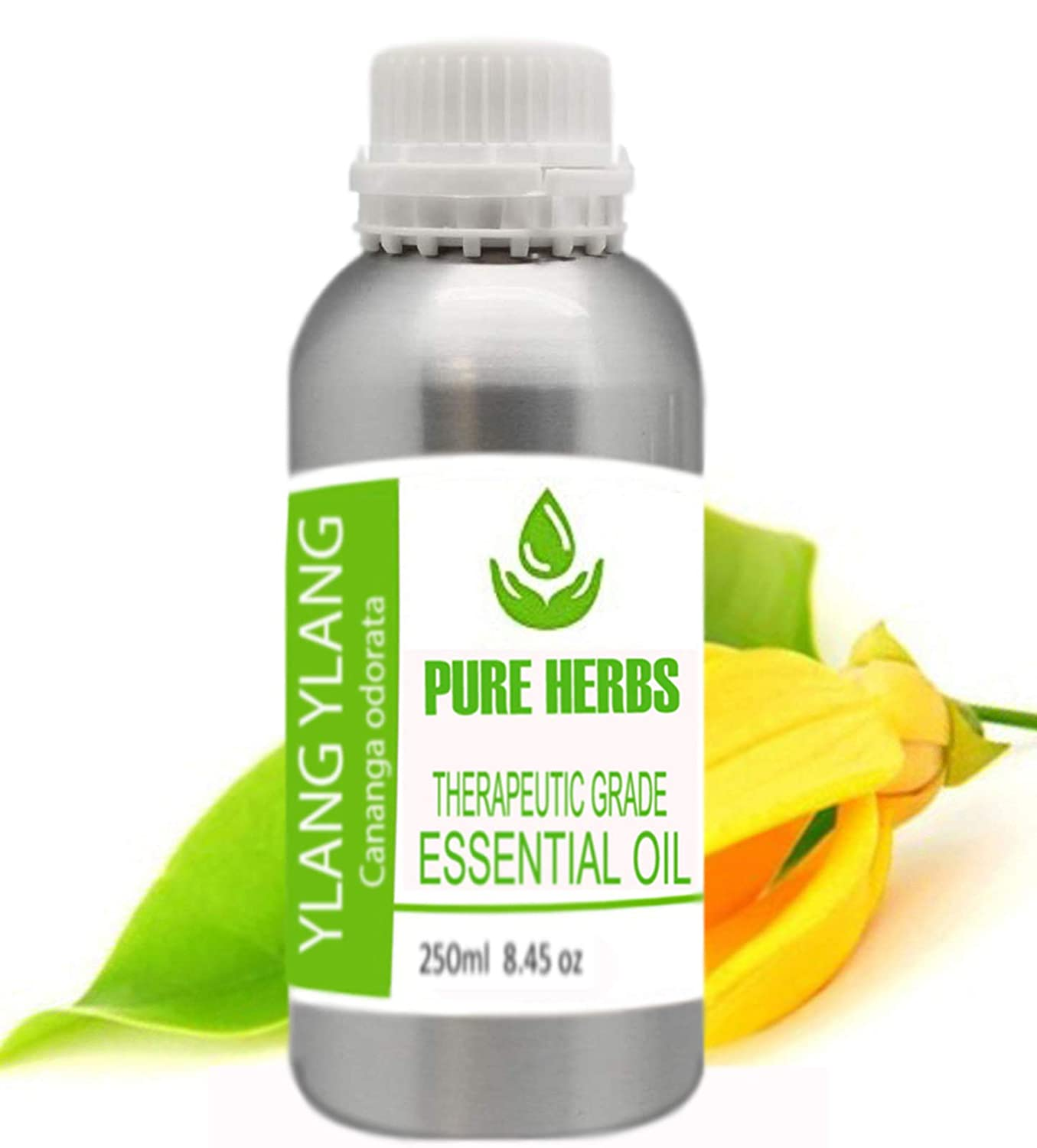 Ylang Pure Natural Therapeutic Cananga Odorata Grade Ess Large Product discharge sale