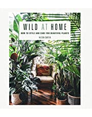 Wild at home: how to style and care for beautiful plants