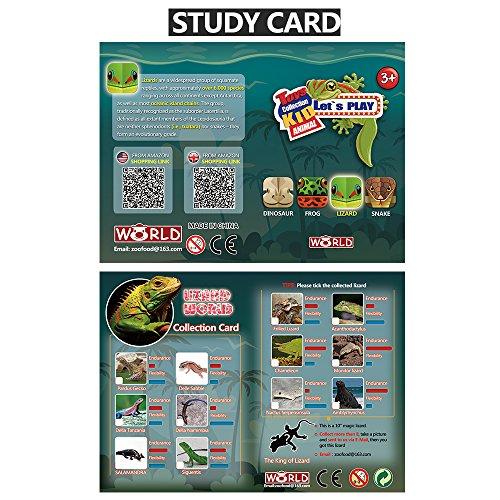 Lizards toys 8 Pièce Mini Rubber Lizard Set Qualité Alimentaire Material TPR Super étude