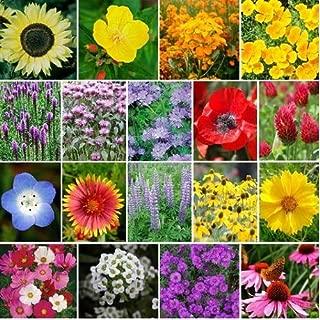 Best kew gardens wildflower seeds Reviews
