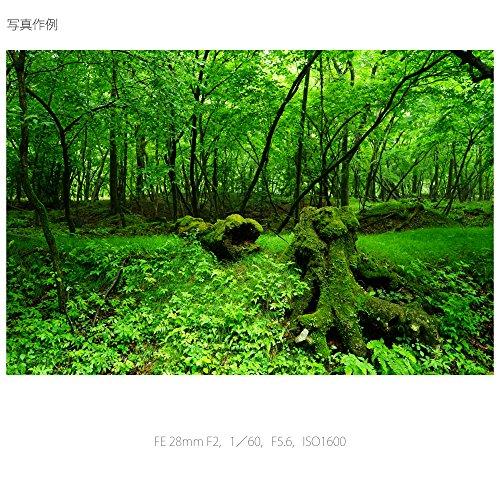 ソニーデジタル一眼カメラα[Eマウント]用レンズSEL28F20(FE28mmF2)