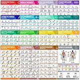 [16-PACK] Laminated Large Workout Poster Set - Perfect Workout Posters For Home Gym - Exercise Charts Incl. Dumbbell, Yoga Poses, Resistance Band, Kettlebell, Stretching & More Fitness Gym Posters