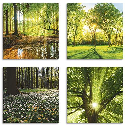 Artland Leinwandbilder auf Holz Wandbild Bild Set 4 teilig je 30x30 cm Quadratisch Landschaft Wald Grün Wald Bach Frühling Windrosen Sonne Baum K2FR