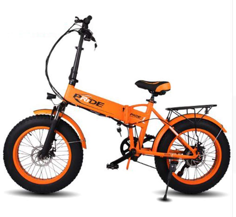 TX Bicicleta Eléctrica 48V10A eléctrico 20