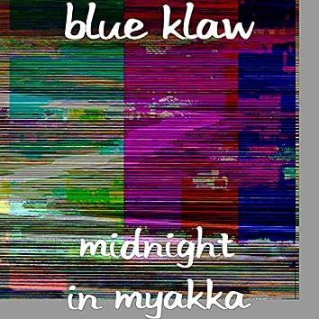 Midnight in Myakka
