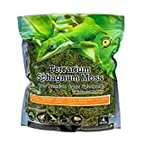 Galápagos (05213) Terrarium Sphagnum Moss, 5-Star Green Sphagnum, Natural, 4QT (Packaging may Vary )