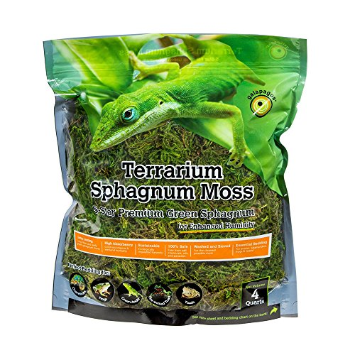 Galápagos (05213) Terrarium Sphagnum Moss, 5-Star Green Sphagnum, Natural, 4QT (Packaging may Vary )