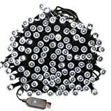 Fairy String lights Waterproof 66ft 200 LEDs 8 Flash Modes 20M Twinkle Decorative Lighting for Christmas Tree,Garden,Bedroom,Indoor/Outdoor,Festival Holiday,New year,Party, Home,Wedding,Patio (White)