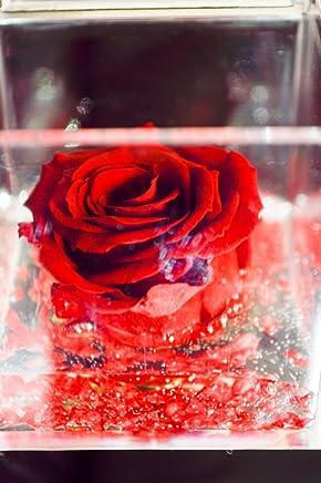 Cubo Rosa stabilizzata nera 5cm profumata /è una vera e propria Rosa che dura anche piu di 5 anni