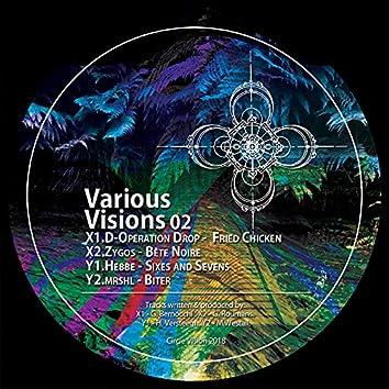 Various Visions 02