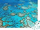 Rompecabezas de 1000 piezas La Gran Barrera de Coral en QueenslandAustralia - Rompecabezas clásicoen una elegante caja con motivoscolección de rompecabezas de fotos deAustralia
