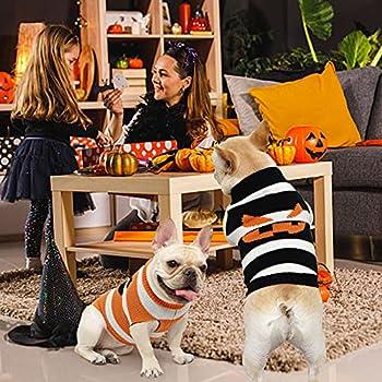 Pull-Overs pour Chien, Pull Halloween Citrouille Chaud Hiver Tricot Pull pour Pet Chien Chat Jumper Chiot à col roulé Manteau Tricots Petite Taille Vêtements Veste