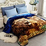 JYK Heavy Korean Faux Mink Fleece Blanket, 5 LB - 2 Ply Reversible 520GSM Silky Soft Plush Warm Blanket for Autumn Winter (Queen, Lion/Dolphin)