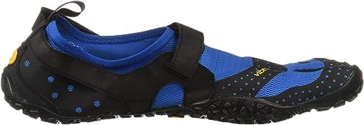 Blue/Black 1