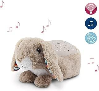 Qinlee wei/ß Hase Stern Anh/änger Musik Pl/üschtiere Spielzeug Kinder bett h/ängen Kinderwagen Musical Rattle Spielzeug