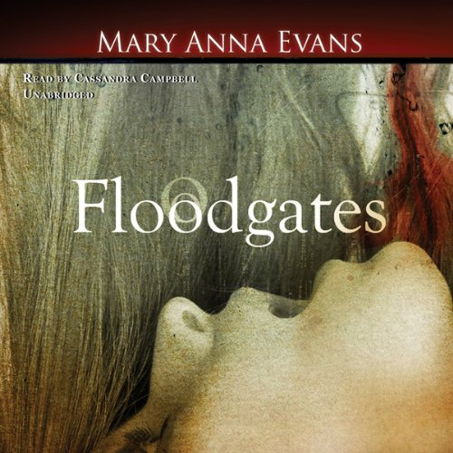 Floodgates audiobook cover art