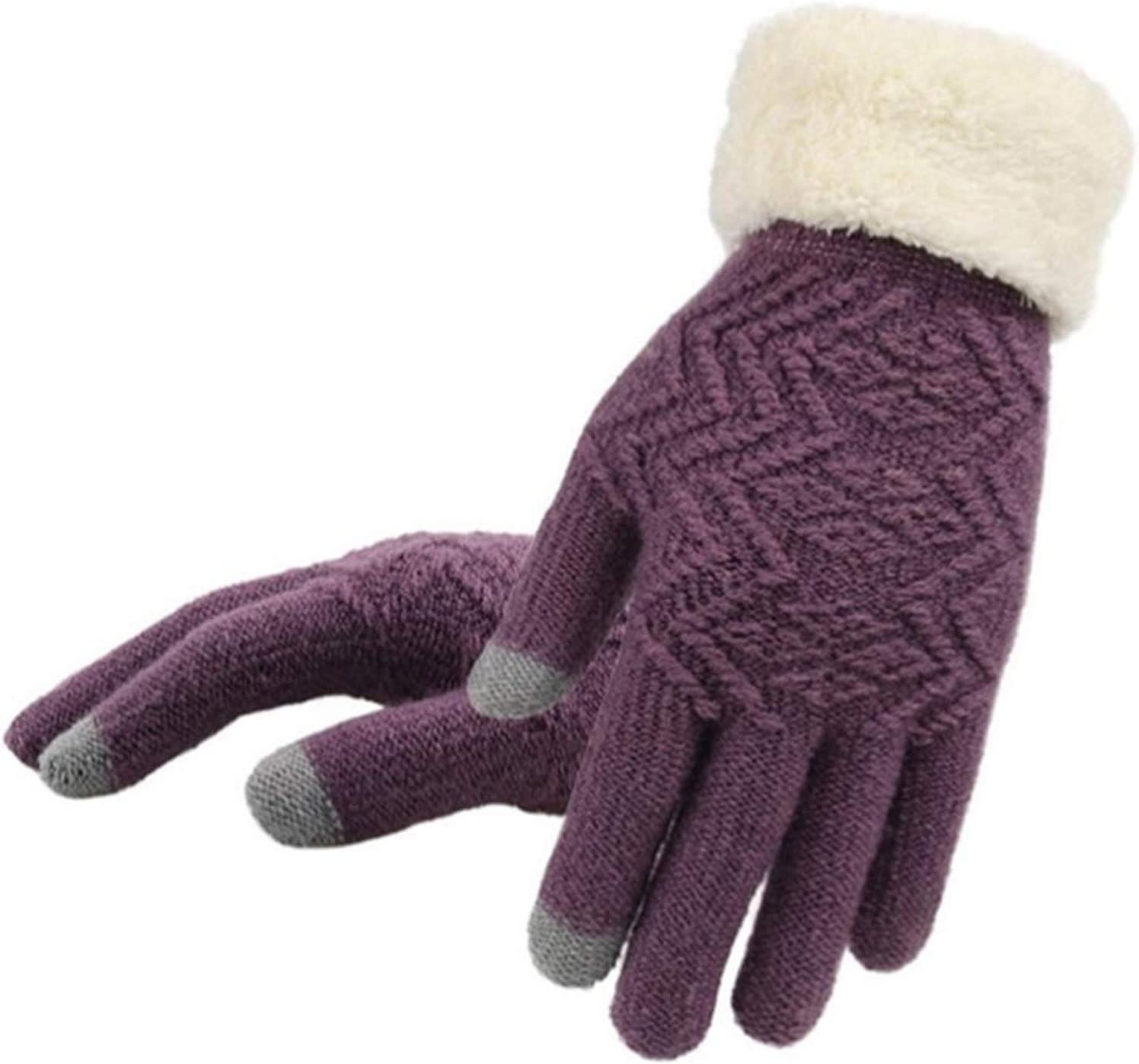 DZHT Winter Touch Screen Knitted Gloves Women Knit Gloves Mittens Female Thick Plush Wrist Driving Glove (Color : Purple, Gloves Size : Free Size)