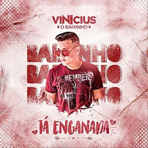 Vinicius o Baixinho
