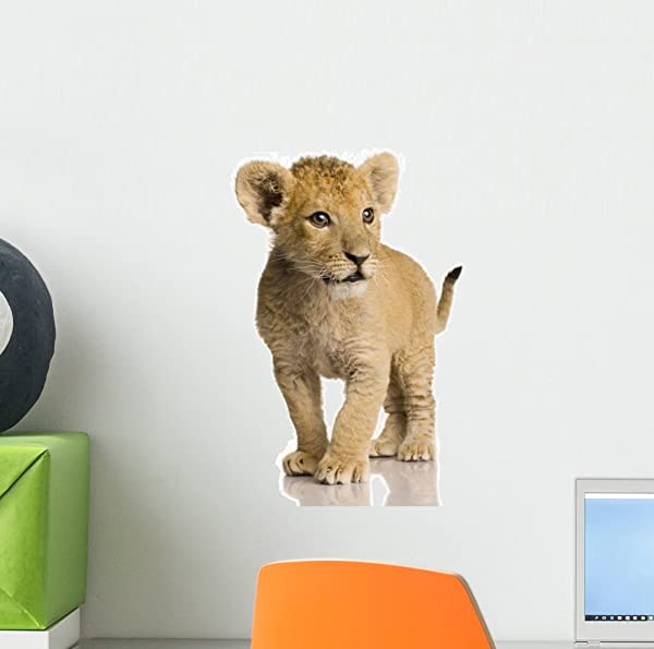 Wallmonkeys Lion Cub Wall Decal Peel And Stick Animal Graphics 12 In H X 12 In W WM409102