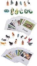 Montessori Animal Match Cards - Farm & Poultry Animals Figurines and Cards (24PCS), Montessori Materials Preschool Infant Toddlers Toys