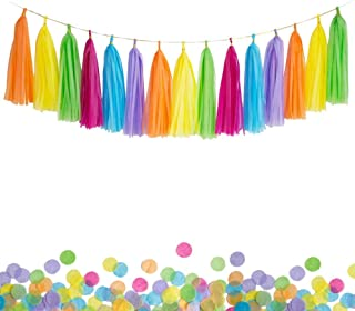 ANSOMO Colorful DIY Tissue Paper Tassel Garland Rainbow Fiesta Multicolor Banner - 30 PCS (Hot Pink/Lavender/Yellow/Orange/Blue/Green)