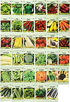 Set of 35 Assorted Vegetable & Herb Seeds