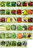 Set of 35 Assorted Vegetable & Herb Seeds 35 Varieties Create a Deluxe Garden All Seeds are...
