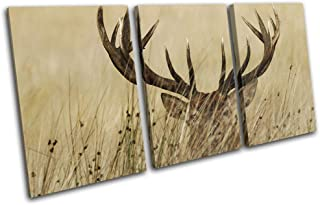 Bold Bloc Design - Stag in Grass Cream Sepia Deer Elk Animals 150x75cm Treble Canvas Art Print Box Framed Picture Wall Hanging - Hand Made in The UK - Framed and Ready to Hang RC-0751(00B)-TR21-LO-C