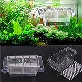 qingsb Fish Breeding Box Allevatore Allevamento Incubatoio Trappola scatole Acquario Guppy Forniture