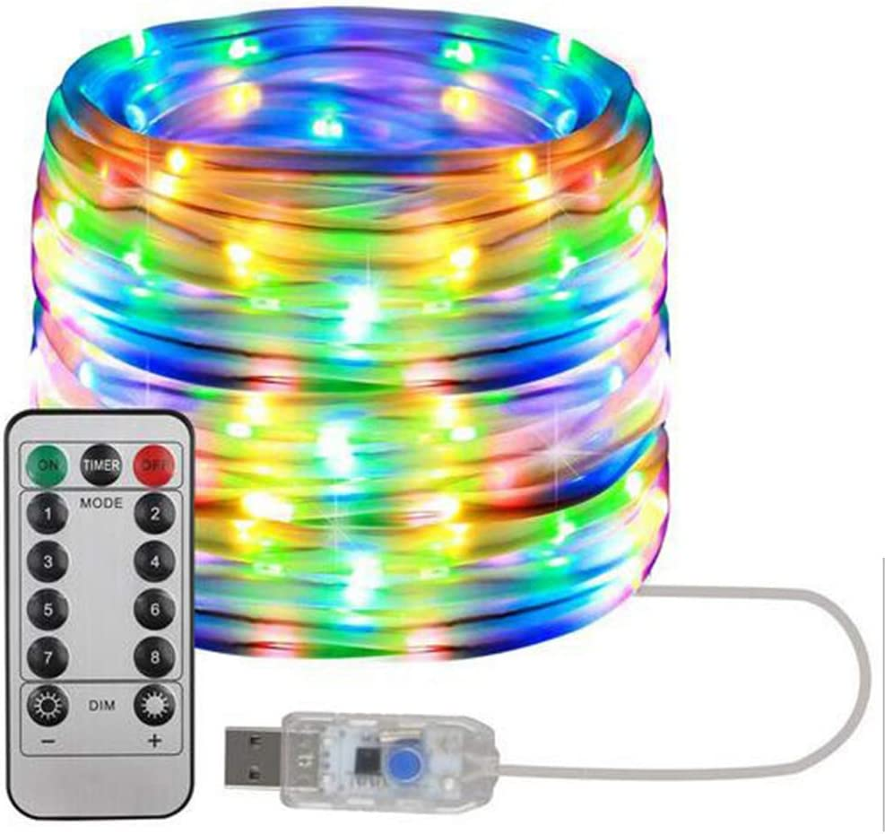 zhangmin Led Rope Lights Ranking TOP15 Outdoor Great interest 33 65.6ft 16.4 USB