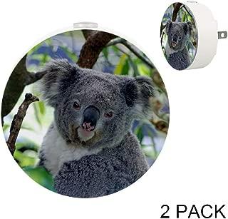 Toddler Night Light with Cute Koala Australia Animal Night Light Plug in Wall with Dusk-to-Dawn Sensor 2 Pack