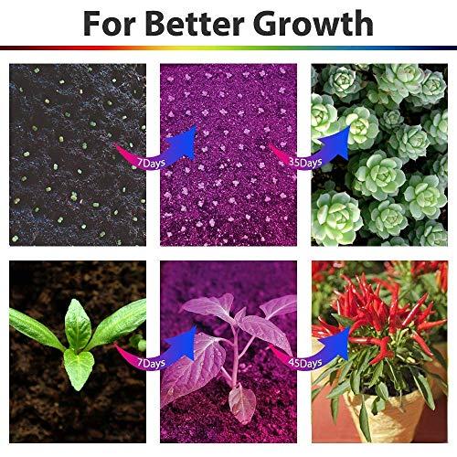 Led Grow light Bulb, Lampat Grow Plant Light for Hydropoics Greenhouse Organic 24W 3-Band