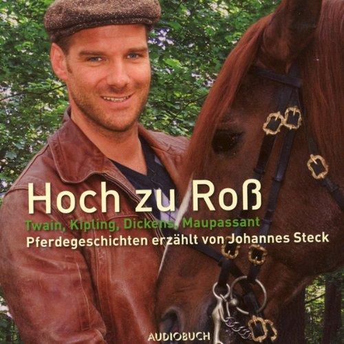 Hoch zu Roß. Pferdegeschichten Titelbild