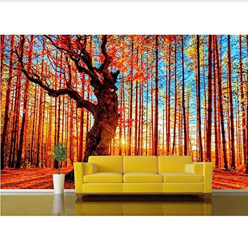 Mural 3d Wohnkultur Tapeten 3D Natur Birke Wald Sonnenschein Fototapete Wandbild Wohnzimmer Selbstklebende Vinyl/Seide Wallpap