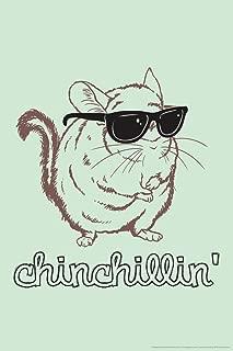 Chinchillin Cute Animal in Sunglasses Humor Cool Wall Decor Art Print Poster 12x18
