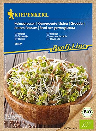 Bio Keimsprossen verschiedene Sorten Alfalfa Radies Brokkoli Weizen Rauke Linsen Zwiebel (Radies)