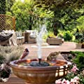 Indoor Fountains & Accessories