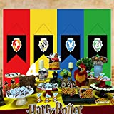 The Noble Collection Harry Potter Electronic...