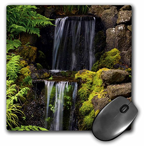 3dRose Waterfall Crystal Springs Rhododendron Garden Portland Oregon USA Mouse Pad (mp_191681_1)